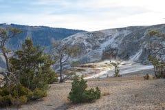 A luz da manhã começa a iluminar a parte superior de Mammoth Hot Springs imagem de stock
