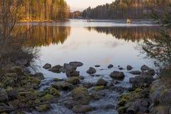 Luz da manhã do outono Foto de Stock