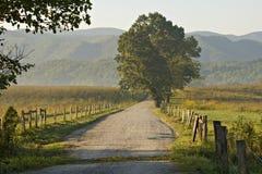 Luz da manhã na estrada do cascalho Imagem de Stock