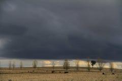 Luz da tempestade Fotografia de Stock