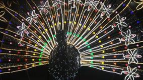 Luz dada forma pavão Imagem de Stock Royalty Free