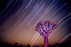 Luz das estrelas Namíbia Imagem de Stock