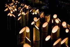 Luz de bambú Fotografía de archivo libre de regalías