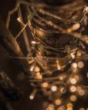 Luz de Bokeh LED en el árbol en el día de Chrismast en Lampang tailandés fotos de archivo libres de regalías