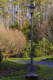 Luz de calle Fotografía de archivo