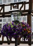 Luz de calle con las flores Fotos de archivo libres de regalías