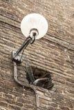 Luz de calle con Pidgeon Fotografía de archivo
