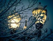 Luz de calle del invierno Imagen de archivo libre de regalías