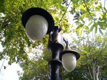 Luz de calle en un parque fotografía de archivo
