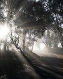 Luz de Dat de Galicia fotografía de archivo libre de regalías