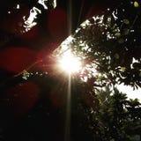 Luz de la esperanza Fotos de archivo libres de regalías