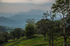 Luz de la mañana en la advertencia del Mt Fotos de archivo
