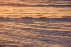 Luz de la mañana en la tundra ártica Fotos de archivo libres de regalías