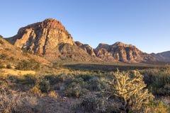 Luz de la mañana en paisaje duro del desierto Foto de archivo