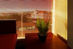 Luz de la mañana a través de la cortina fotos de archivo libres de regalías