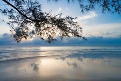 Luz de la madrugada en una playa pacífica fotos de archivo libres de regalías