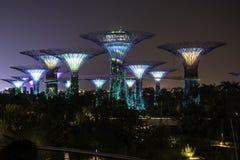 Luz de la noche en jardín por la bahía Singapur Fotografía de archivo libre de regalías