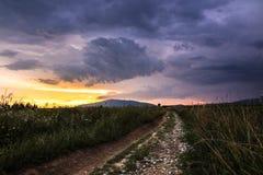 Luz de la puesta del sol en el prado imágenes de archivo libres de regalías