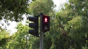 luz de la señal de tráfico almacen de metraje de vídeo