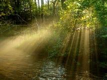 Luz de la tarde Imagen de archivo libre de regalías