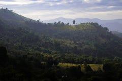 Luz de la tarde encima de la montaña Imagen de archivo libre de regalías