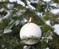 Luz de la vela en ramificaciones firry sitiadas por la nieve Imagen de archivo libre de regalías