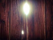 Luz de la vida imagen de archivo libre de regalías