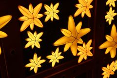 Luz de las estrellas Starbright Foto de archivo