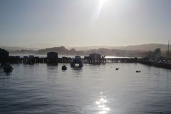 Luz de névoa no cais de Monterey Imagens de Stock Royalty Free