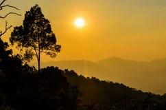 Luz de oro de la puesta del sol Foto de archivo libre de regalías