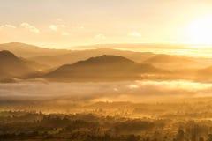 Luz de oro de la salida del sol imagen de archivo