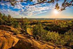 Luz de oro sobre Autumn Treetops Imagenes de archivo