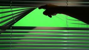 A luz de uma lanterna cai brilhantemente no jalousie quando uma pessoa os levanta acima Tela verde filme