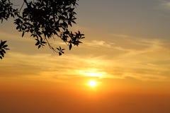 Luz de un nuevo día Foto de archivo libre de regalías