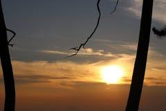 Luz de un nuevo día Fotografía de archivo libre de regalías