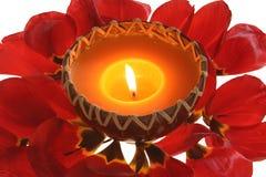 Luz de vela & folhas Foto de Stock Royalty Free