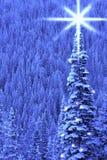 Luz del árbol de navidad Fotos de archivo