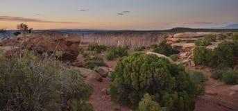 Luz del desierto Foto de archivo libre de regalías