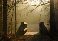 Luz del invierno Fotos de archivo