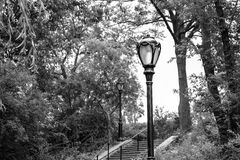 Luz del parque de NYC Fotos de archivo libres de regalías