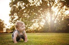 Luz del sol de arrastre del país del bebé Fotos de archivo