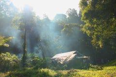 Luz del sol de la mañana en un sitio para acampar fotos de archivo libres de regalías