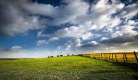 Luz del sol de oro en campos con el cielo azul y las nubes Imágenes de archivo libres de regalías