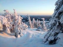 Luz del sol del invierno Fotografía de archivo