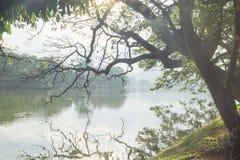 Luz del sol del lago Kandy después de la lluvia, Sri Lanka Foto de archivo