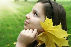 Luz del sol del otoño Fotos de archivo libres de regalías