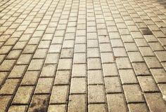 Luz del sol en el pavimento pavimentado del guijarro Imagenes de archivo