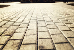 Luz del sol en el pavimento pavimentado del guijarro Fotografía de archivo
