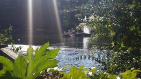 Luz del sol encendido al lago Imagen de archivo