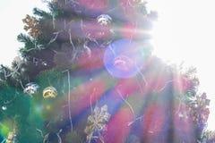 Luz del sol y llamarada en el árbol de navidad Fotos de archivo